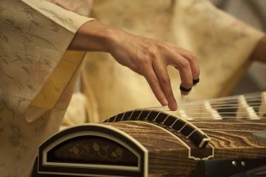 Shiho Kurauchi playing the koto
